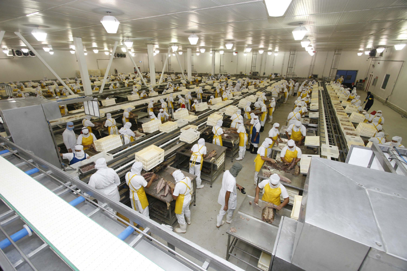 A importância das Boas Práticas de Fabricação (BPF) para as Indústrias de Alimentos
