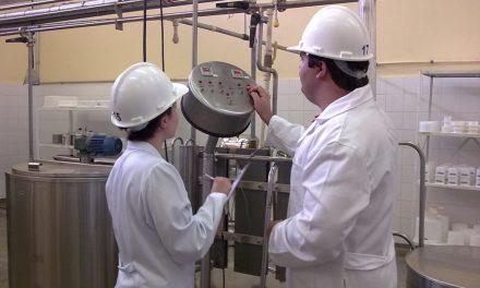 Engenharia de Alimentos: produção padronizada e alimentos seguros