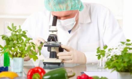 Como atuar na área de Ciência e Tecnologia de Alimentos
