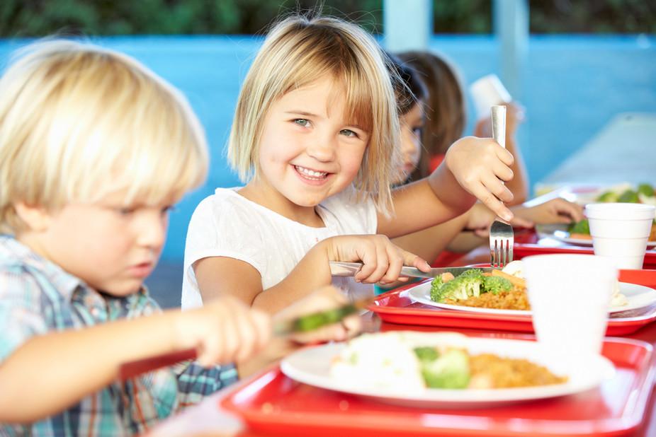 ALIMENTAÇÃO ESCOLAR: SEGURANÇA ALIMENTAR E NUTRICIONAL DE CRIANÇAS E JOVENS