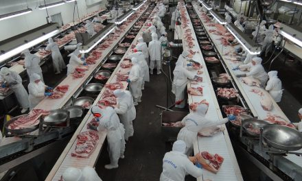 A segurança do trabalho para a industria do setor de frigoríficos