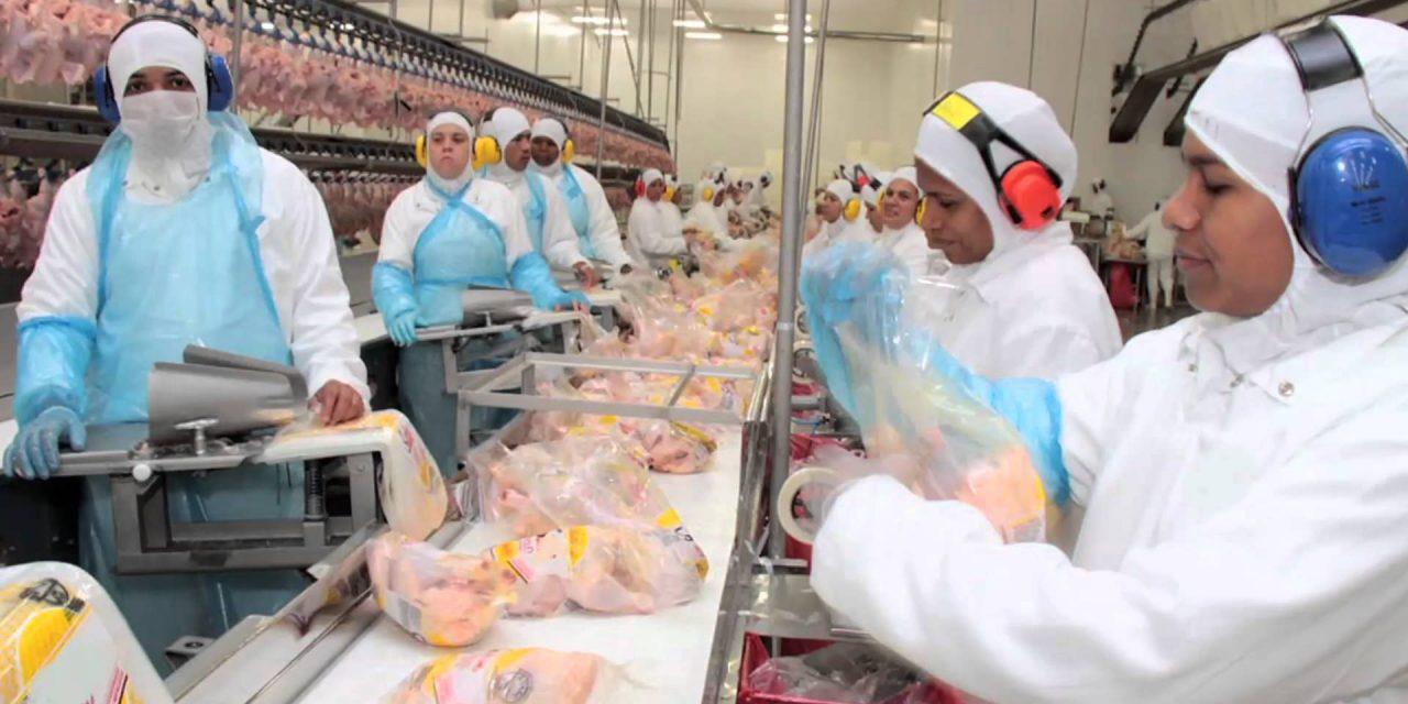 RDC 13 de 2001 Regulamento Técnico para Instruções de Uso, Preparo e Conservação na Rotulagem de Carne de Aves e Seus Miúdos Crus, Resfriados ou Congelados