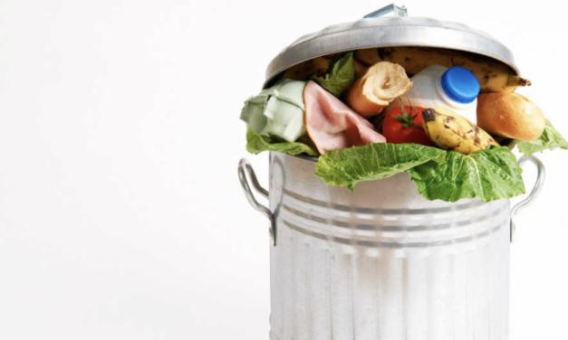 LEI Nº 14.016 – Combate ao Desperdício e a Doação de Alimentos